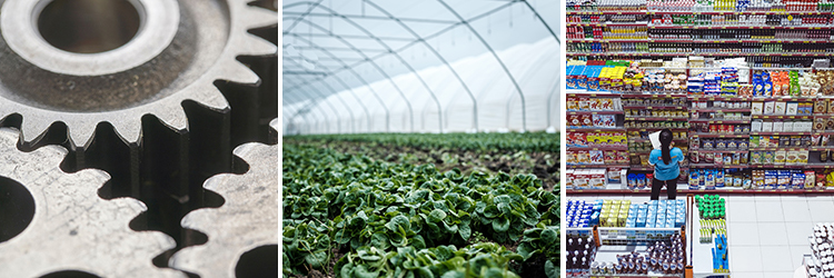 製造・農業、林業・小売・サービス業、飲食業、IT業界、教育関係など。様々な業種の就労ビザに対応できます。
